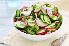 春天沙拉用在碗的萝卜 免版税库存图片
