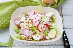 春天沙拉用萝卜 库存图片