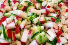 春天沙拉用黄瓜和萝卜 库存照片