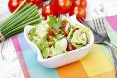 春天沙拉-健康食物 免版税库存照片