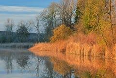 春天海岸线Whitford湖 免版税库存图片