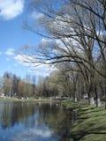 春天湖在公园 库存图片