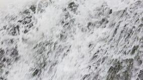 春天瀑布背景 股票录像