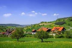 春天瑞士 免版税库存照片