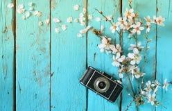 春天白色樱花树的顶视图图象在老照相机旁边的在蓝色木桌上 免版税图库摄影