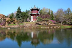 春天的中国庭院 库存图片