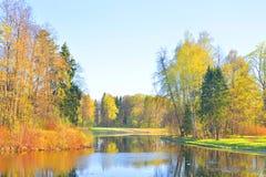 春天的公园 免版税库存照片