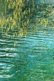 春天的看法在湖的 免版税库存照片
