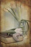 春天的静物画图象开花与葡萄酒纹理过滤器e 库存图片