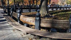 春天的,纽约美国中央公园 免版税图库摄影