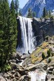 春天秋天,优胜美地国家公园,加利福尼亚,美国 免版税图库摄影