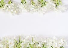 春天称呼了储蓄照片 2个所有时段小鸡概念复活节彩蛋开花草被绘的被安置的年轻人 女性桌面场面 水仙,黄水仙框架在白色桌上开花 图库摄影
