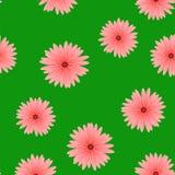 春天红色花无缝的样式 库存图片
