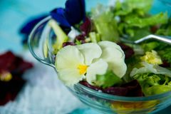 春天维生素沙拉:绿色用西红柿和可食的花(蝴蝶花)在蓝色木背景 概念的健康 图库摄影