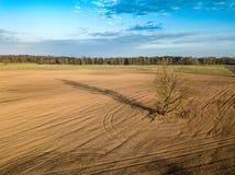 春天耕地 领域和一棵偏僻的树 在视图之上 天线,寄生虫 库存图片
