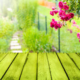 春天背景小庭院木盘区 库存照片