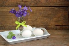 春天背景用鸡蛋 库存照片
