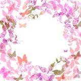 春天背景,五颜六色的蝴蝶被设置的花圈 免版税库存图片