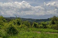 春天自然美好的风景与绿色沼地和森林的往Rila山的Plana山的 免版税库存照片