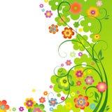 春天花卉背景 库存照片