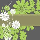 春天花和叶子框架 库存照片