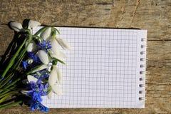 春天花和笔记薄花束在木背景 库存照片