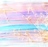 春天花和水彩纹理的抽象两次曝光图象 库存照片