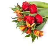 春天花美丽的花束  免版税库存图片