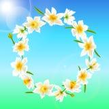 春天花花圈 库存照片