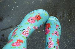 春天花Rainboots逗人喜爱的异想天开的多雨天气 免版税库存照片