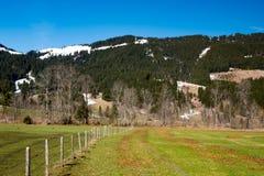春天草和山的领域 库存照片