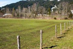 春天草和山的领域 库存图片