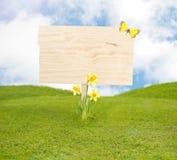 春天草甸的空白的木板 库存照片