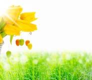 春天草甸,复活节 图库摄影
