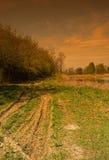 春天葡萄酒照片在自然保护的 库存图片