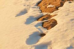 春天被解冻的补丁 雪熔化地球是可看见的 库存照片