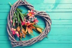 春天郁金香花和装饰心脏 免版税库存图片