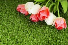 春天郁金香花束在一棵绿色人为草的。 免版税库存照片