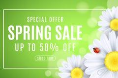 春天销售横幅 瓢虫在雏菊花爬行  您的事务的季节性设计 水下落 点燃bokeh 框架 库存例证