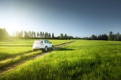 春天领域和被弄脏的汽车在地面路 图库摄影