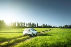 春天领域和被弄脏的汽车 免版税库存图片