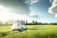 春天领域和blured汽车在地面路 免版税库存图片