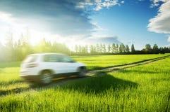 春天领域和blured汽车在地面路 库存照片