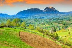 春天风景和农村庭院, Holbav,特兰西瓦尼亚,罗马尼亚,欧洲 图库摄影