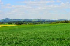 春天风景德国山领域森林 免版税图库摄影