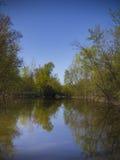 春天风景用水 库存照片
