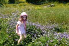 春天风景的女孩 库存照片