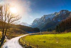 春天风景贝希特斯加登在德国 免版税库存图片