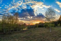 春天风景,多彩多姿的日落,年轻桦树 免版税库存图片