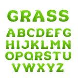 春天,夏天字母表由草制成 早期的春天绿草字体 免版税库存图片